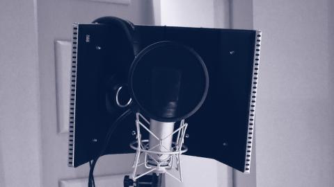 Mikrofon mit Diffusor