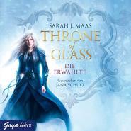 Celaenas Geschichte - Die Erwählte (Throne of Glass 1)